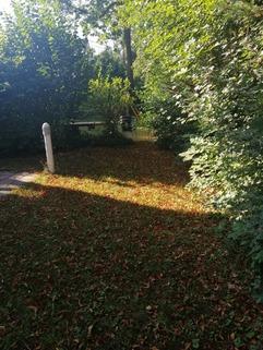 Gartenbereich Maisonettewohnung mit Gartenanteil, Terrasse, Balkon u. TG-Stellplatz in ruhiger Lage, Obermenzing