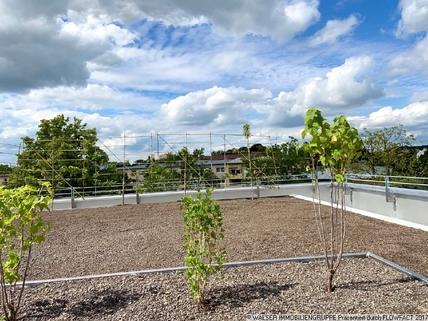 Urban Gardening * Dachterrassen-Apartment* im NEUBAU my room active! Für Studenten und Azubis *