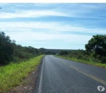 N60200008_mvc-001f.jpg Fazenda bzw. Bauernhof mit 2308 ha in Minas Gerais-Brasilien