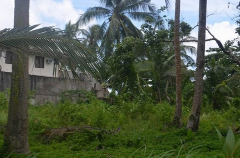N59660013_mvc-001f.jpg Bauland 1000qm mit schönen Strand in Philippinen