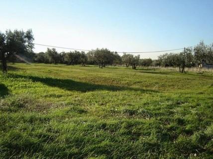 PAlle0008_mvc-001f.jpg Bau-Grundstück in Kroatien Istrien bei Pula