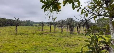 PCH0107_mvc-001f.jpg Brasilien riesengrosses 3?000 Ha Grundstück mit Rohstoffen