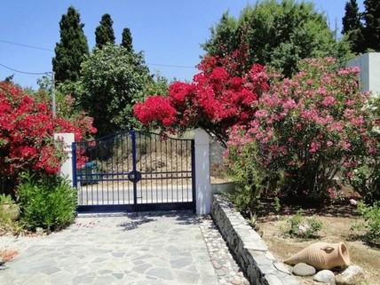 PGR0158_mvc-001f.jpg Villa auf der Sonneninsel Kos zu verkaufen