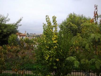 PGR0173_mvc-001f.jpg Landhaus im Grünen mit Blick auf das Meer