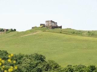 PI0202_mvc-001f.jpg Schönes Stück Land mit Haus in der Toscana