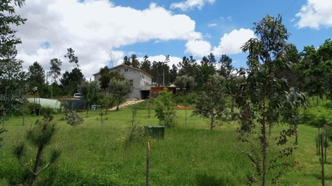 PPT0221_mvc-001f.jpg Stilvolles Landhaus an sehr ruhiger Lage in Zentralportugal