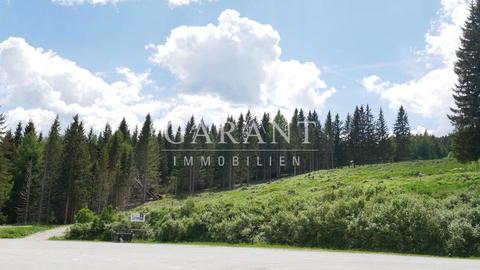 Fanningberg Bauen Sie Ihr eigenes Chaletdorf oder ein Hotel im Familienski- und Wandergebiet Fanningberg!