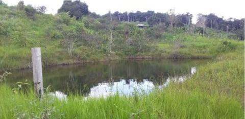 PBR0082_mvc-001f.jpg 150 Ha Tiefpreis-Farm in Brasilien kaufen