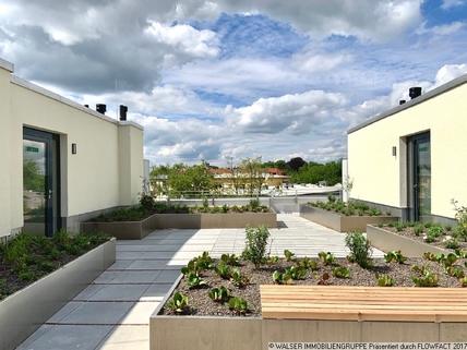 Freiflächen Dachgärten Schickes Dachterrassen-Apartment! Für Studenten/Azubis *ERSTBEZUG*