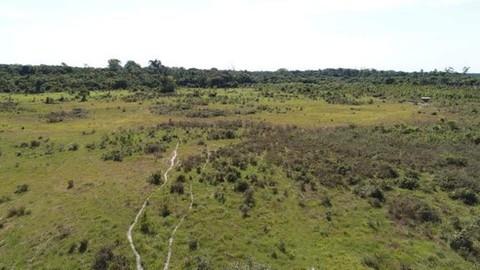 PBR0108_mvc-001f.jpg Brasilien riesengrosse 1?987 Ha Farm Region - Rorainopolis R