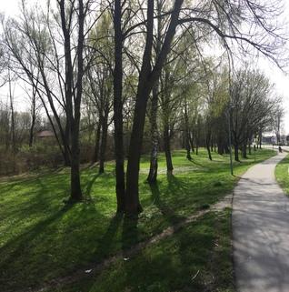 Umgebung Plattling: Großes Baugrundstück mit Altbestand - zentrumsnah am Mühlbach