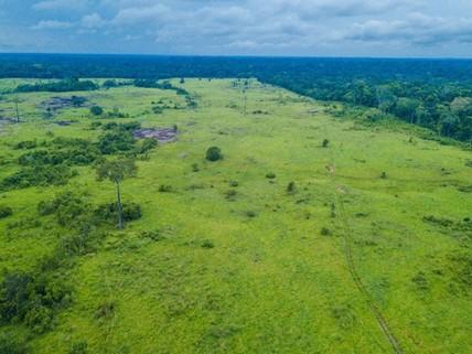 PBR0093_mvc-001f.jpg Brasilien 796 Ha billiges-Land mit Rohstoffen