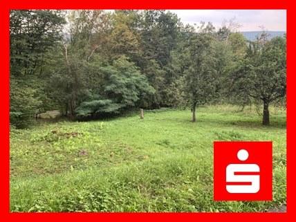 Außenansicht Grundstück in Bad Bocklet