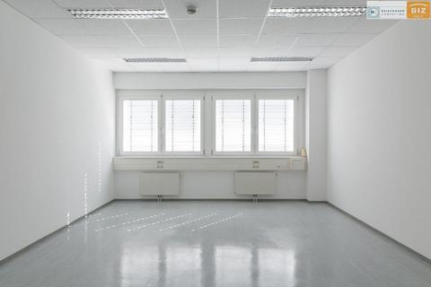 Büro1 Mietbares 2-Raum Büro im BIZ-Wels inkl. Küchenblock, TOP 1S04+ 1S06