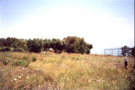 HU0010_mvc-001f.jpg Grundstück direkt am Strand Ch 55,56 Rarität