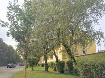Denkmalgeschützte Wohnanlage Denkmalgeschütztes Haus - mit neuem Dachausbau in 2006