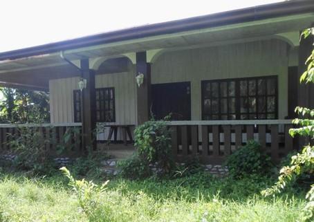 N59660015_mvc-001f.jpg Einfamilienhaus,Reisfelder, Garten, 6088 qm Philippinen