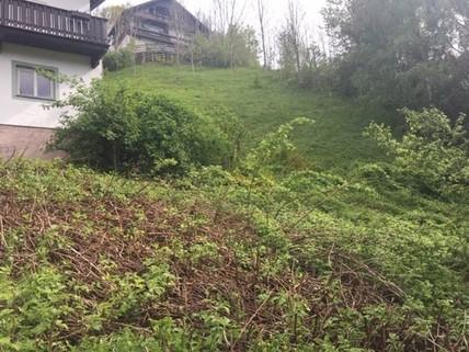 Wohnen am Schlossberg - Schwaz - Grundstück in Sonderlage