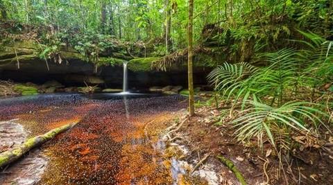 PBR0132_mvc-001f.jpg Brasilien riesengrosses 11?250 Ha Grundstück mit Rohstoffen