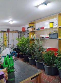 PYU0039_mvc-001f.jpg Wunderschönes Haus in Serbien zu verkaufen