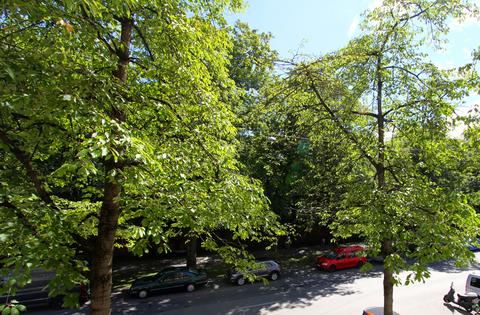 Blick aus dem Fenster Top Lage - Isarvorstadt, City-Nähe, schönes 1-Zimmer-Apartment