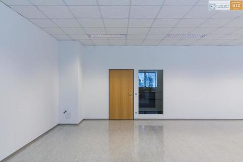 Büro Helles 1-Raum Büro im BIZ-Wels, TOP 2N15