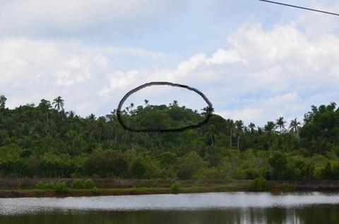 N59660008_mvc-001f.jpg Bauland, Investment, 3,12ha an Küstenstrasse in Philippinen