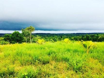 PBR0107_mvc-001f.jpg Brasilien riesengrosses 18?000 Ha Grundstück mit Rohstoffen