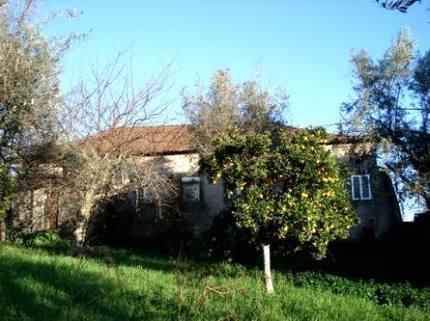 BM0088_mvc-001f.jpg Herrschaftliches Dorfhaus mit einem reichhaltigen Obstgarten