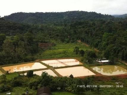 PBR0120_mvc-001f.jpg Brasilien 52 Ha Fischfabrik - AM