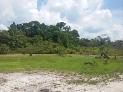 PCH0103_mvc-001f.jpg Brasilien 900 Ha Grundstück Region Manaus-Silves AM