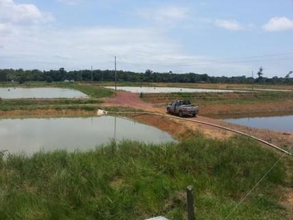 PBR0145_mvc-001f.jpg Brasilien 90 Ha grosse schöne Fischzucht und Rinderzuchtfarm