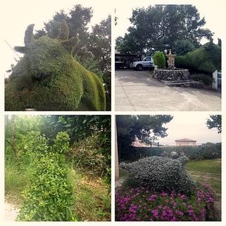 Gartenkunst Südfrankreich?... Warum eigentlich nicht?!<br /> <br /> Anwesen mit 3 Wohnungen und Pool in ruhiger Lage.