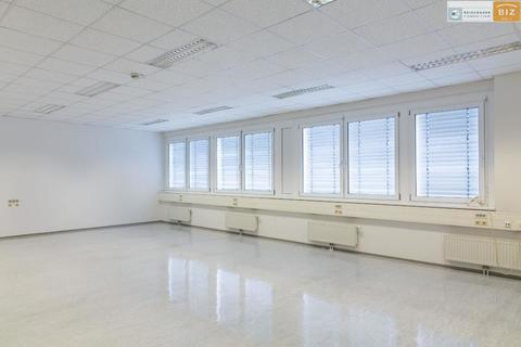 Fensterfront Helles 1-Raum Büro im BIZ-Wels, TOP 2N15