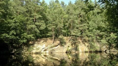 PD7139_mvc-001f.jpg Grundstück im Wald mit Kranteich