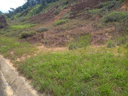 PBR0100_mvc-001f.jpg Brasilien 116 Ha Grundstück in der Nähe von Manaus