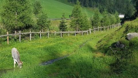 Ansicht vom Bach auf den Hof Geschlossener Hof eine Tiroler Rarität