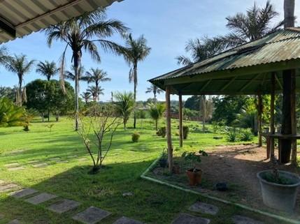 PBR0147_mvc-001f.jpg Brasilien 246 Ha Fischzucht und Früchtefarm am Fluss Region