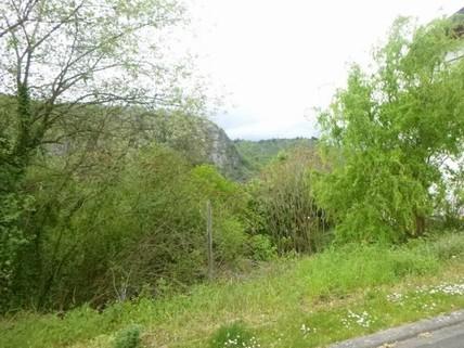N10110213_mvc-001f.jpg Grundstück mit unverbaubarer Sicht auf den Rhein