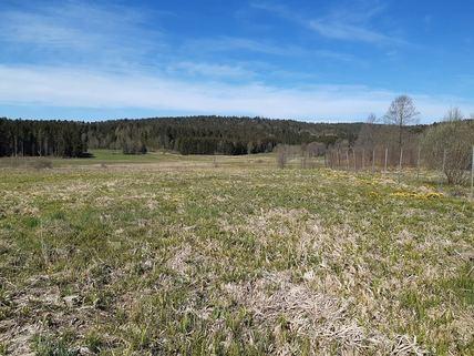 Ansicht Wiesengrundstück in 94518 Spieglau / Palmberg