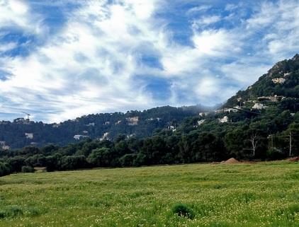 zum Grundstück Mallorca, Costa Canyamel, Baugrundstück mit Traumblick auf die Bucht