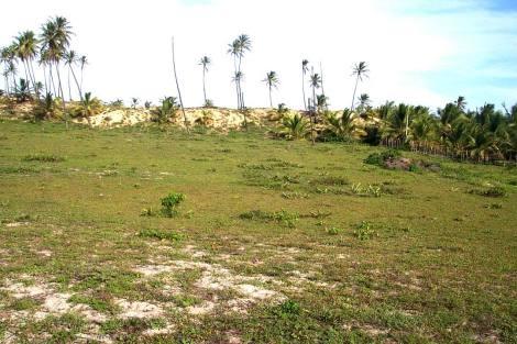 PBR0022_mvc-001f.jpg Strandgrundstück in Bahia