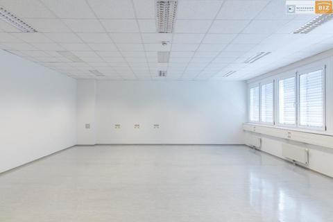 Helles Büro Helles 1-Raum Büro im BIZ-Wels, TOP 2N15