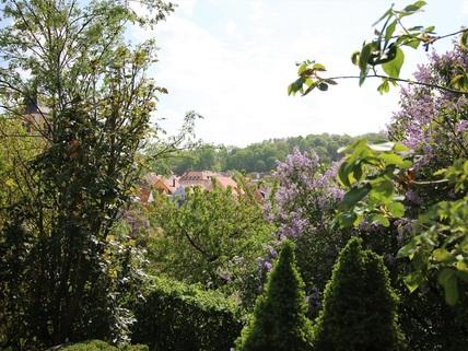 Blick auf Stadt und Fluss Moderne Stadtvilla mit historischer Burgmauer