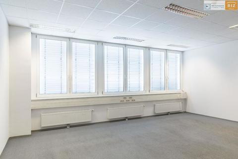 Fenster Ruhiges 1-Raum Büro im BIZ-Wels, TOP 1N27
