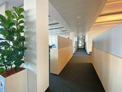 Flur Repräsentative Büroflächen mit modernster Ausstattung