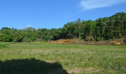 N59660023_mvc-001f.jpg Bauland, Agrarland für Investor, Meernähe in Philippinen