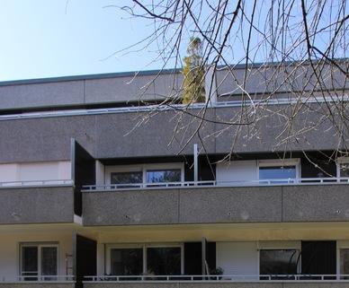 Ansicht vom Garten Erstbezug nach Sanierung 1-Zimmer-Wohnung Bestlage Menterschwaige