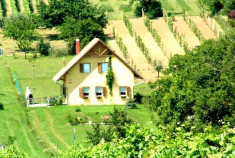 PH0118_mvc-001f.jpg Einfamilienhaus am Plattensee im Grünen