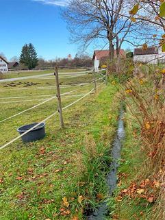 Bächlein westliche Grundstück Idyllisches Grundstück für das selbstgenutzte Eigenheim<br /> zur Bebauung für ortsansässige Penzinger